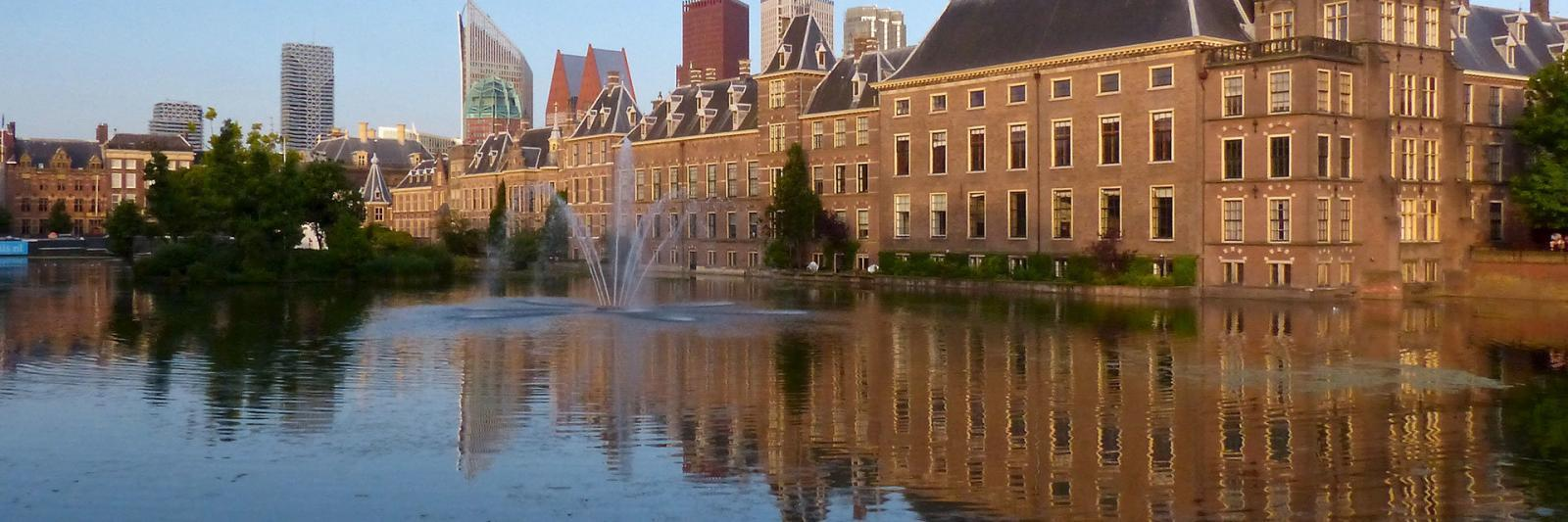 Contact-vestiging-Haaglanden-Mangotree-verzekeringen